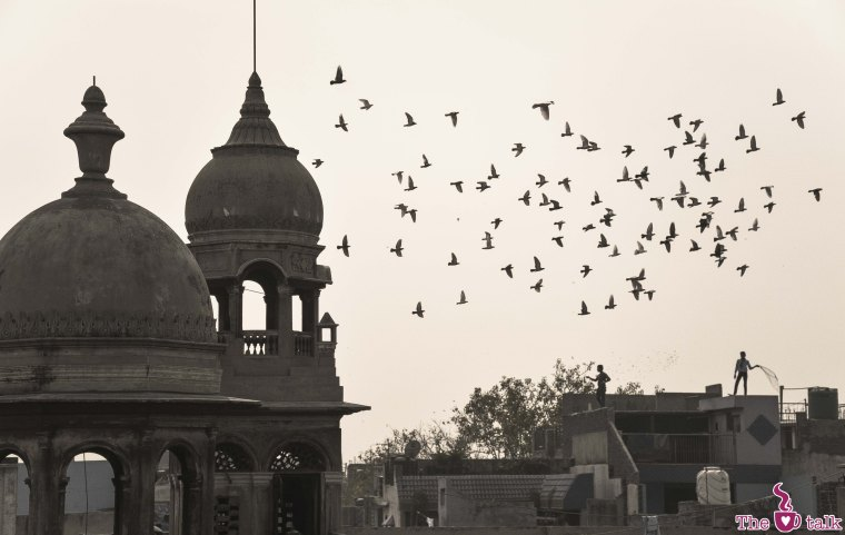 Delhi - Old Market (66)